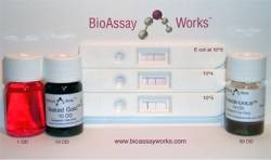 Assay Development by BioAssay Works, LLC product image