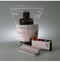 Pierce™ Coomassie Plus (Bradford) Assay Kit