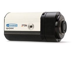 QICAM Digital Camera by QImaging product image
