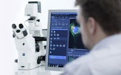 ZEISS ZEN Lite by ZEISS Microscopy product image