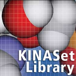 KINASet Kinase Directed Library by ChemBridge Corporation thumbnail