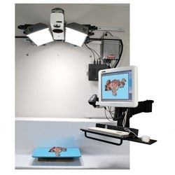 PathWall: Wall Mounted Imaging System by SPOT Imaging Solutions A Division of Diagnostic Instruments, Inc. product image