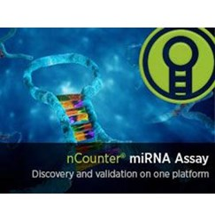 nCounter® miRNA Analysis