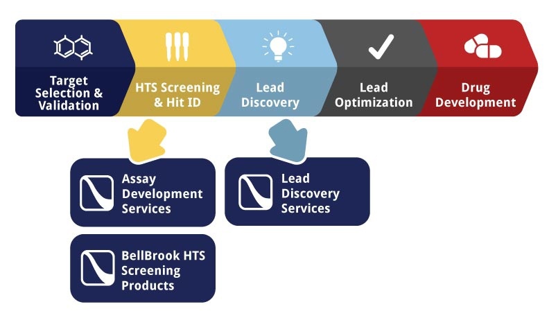Assay Development Services by BellBrook Labs thumbnail