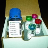 FASTCell Meta-Keratin Surface Coatings