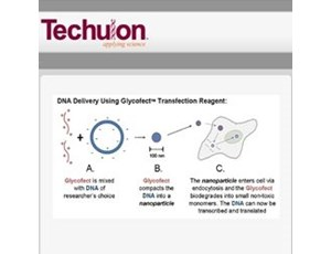 Glycofect™ Transfection Reagent
