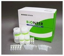 AccuPrep® Stool DNA Extraction Kit; Fresh or frozen stool, 100 extractions by Bioneer product image