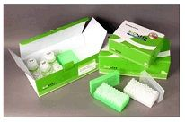 AccuPrep® Nano-Plus Plasmid Mini Extraction Kit by Bioneer thumbnail