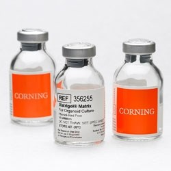 Corning Matrigel Matrix for Organoids by Corning Life Sciences product image