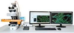 TissueFAXS Tissue & Cell Analysis System