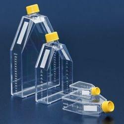 Tissue Culture Flasks 25 - 300 cm2 by TPP Techno Plastic Products AG product image