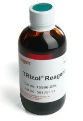 TRIzol Reagent by Thermo Fisher Scientific Invitrogen thumbnail
