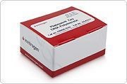 Platinum® Taq DNA polymerase by Thermo Fisher Scientific Invitrogen product image