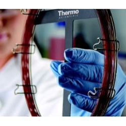 Thermo Scientific GC columns by Thermo Fisher Scientific product image
