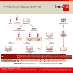 Macrophage Generation Media DXF by PromoCell GmbH thumbnail