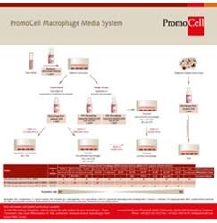 Macrophage Generation Media DXF