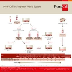 Macrophage Generation Media DXF by PromoCell GmbH product image