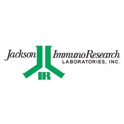 Streptavidin and Conjugates by Jackson ImmunoResearch Laboratories Inc. product image
