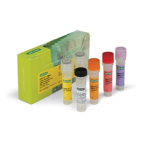 ddPCR™ SMN1 Copy Number Determination Kit (1863500) by Bio-Rad thumbnail