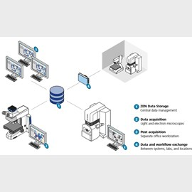 ZEISS ZEN Data Storage by ZEISS Research Microscopy Solutions product image
