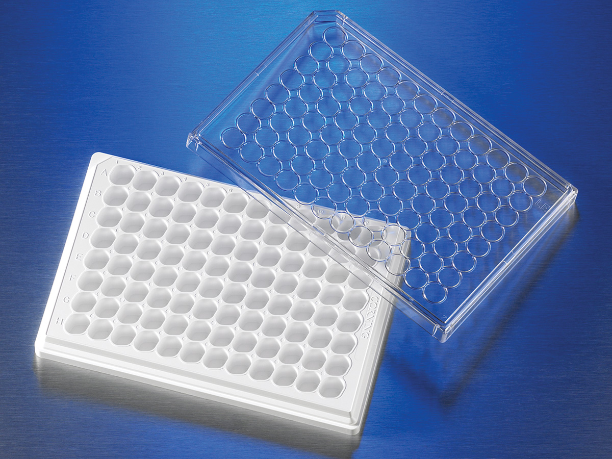 HTS Transwell®-96 Receiver Plate, White, TC-treated, Sterile by Corning Life Sciences thumbnail