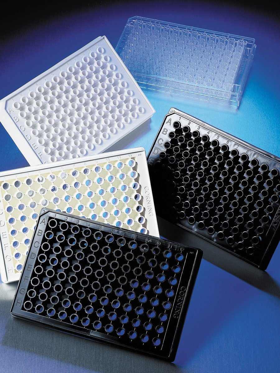 Corning® 96-well Flat Clear Bottom Black Polystyrene Poly-D-Lysine Coated Microplates, 20 per Bag, with Lid, Aseptically Manufactured by Corning Life Sciences thumbnail