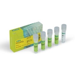 VivaFix™ 547/573 Cell Viability Assay by Bio-Rad product image