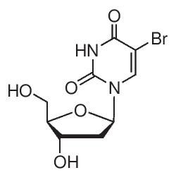 5-Bromo-2′-deoxyuridine by Merck KGaA, Darmstadt, Germany thumbnail