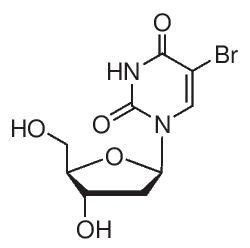5-Bromo-2′-deoxyuridine by Merck KGaA, Darmstadt, Germany product image
