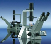 Axiovert 40 C - Inverted Microscope by ZEISS Microscopy product image