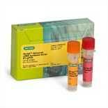 iScript™ Advanced cDNA Synthesis Kit for RT-qPCR (170-8842)