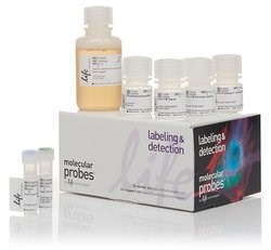Invitrogen™ Click-iT™ EdU Alexa Fluor™ 647 Flow Cytometry Assay Kit by Thermo Fisher Scientific product image