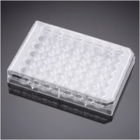 Falcon® 48 Well Clear Flat Bottom TC-Treated Cell Culture Plate, with Lid, Individually Wrapped, Sterile, 50/Case by Corning Life Sciences thumbnail