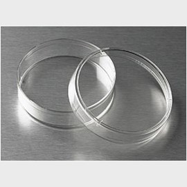 Corning® 60mm TC-Treated Culture Dish by Corning Life Sciences product image
