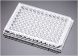 Corning® BioCoat™ Poly-D-Lysine 96 Well Clear Flat Bottom TC-Treated Microplate, with Lid, 5/Case
