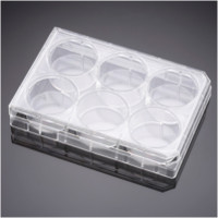 Corning® PureCoat™  6 Well Carboxyl Plate, 5/Pack, 50/Case by Corning Life Sciences thumbnail