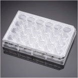 Corning® PureCoat™ Amine 24 Well Plate, 5/Case