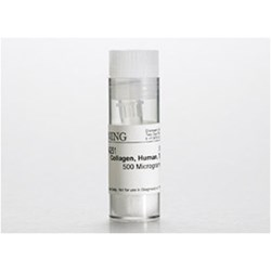 Corning® Collagen VI, Human, 500µg by Corning Life Sciences product image