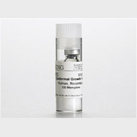 Corning® Epidermal Growth Factor (EGF), Human Recombinant, 100µg, 1/Pack by Corning Life Sciences product image