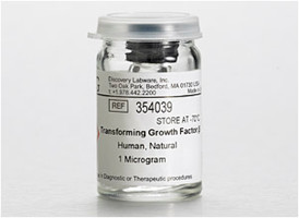 Corning® Transforming Growth Factor-b (TGF-b), Human Natural, 10µg, 2µg/Container, 5/Pack by Corning Life Sciences thumbnail