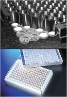 FiltrEX™ 96 Well Filter Plates with 0.2µm PVDF Membrane, Nonsterile by Corning Life Sciences product image