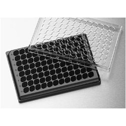 HTS Transwell®-96 Receiver Plate, Black, TC-Treated, Sterile by Corning Life Sciences product image