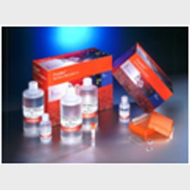 Pronto!™ Validation Kit for 10 Reactions by Corning Life Sciences product image