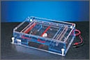 Classic Series 96 Well Compatible Gel Systems by Thermo Fisher Scientific thumbnail