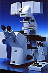 LSM 510 NLO and LSM 510 META NLO - Multiphoton Microscopes by ZEISS Microscopy product image