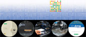 Microarray Products by Bio-Rad thumbnail