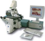 P.A.L.M - Laser Microdissection and Pressure Catapulting Technology by ZEISS Microscopy product image