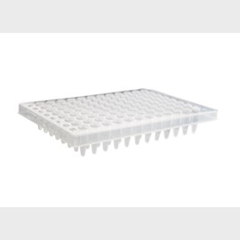 Axygen® 96-well Polypropylene PCR Microplate, Half Skirt, Clear, Nonsterile by Corning Life Sciences product image