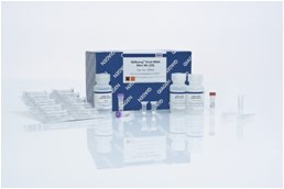 QIAamp Viral RNA Mini Kit (50)