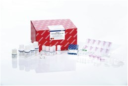 AllPrep DNA/RNA FFPE Kit (50)